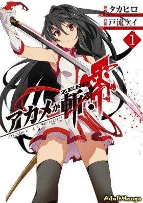 Убийца Акаме! Zero - Постер